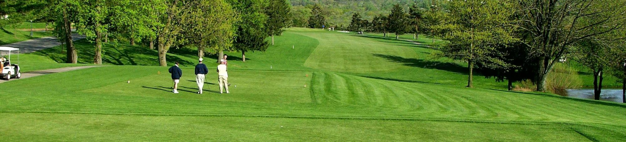 Open fairway with golfers on the left